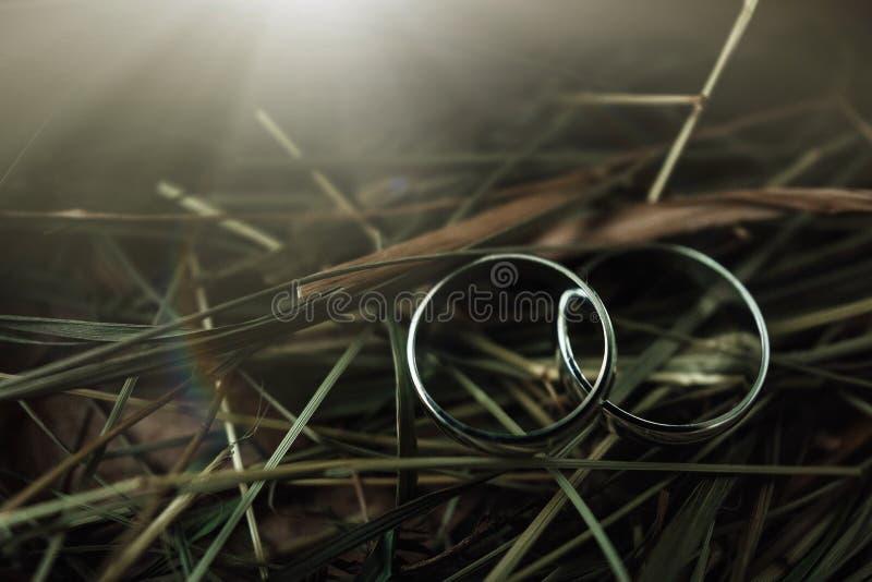Para obrączki ślubne z bokeh tłem obrazy stock
