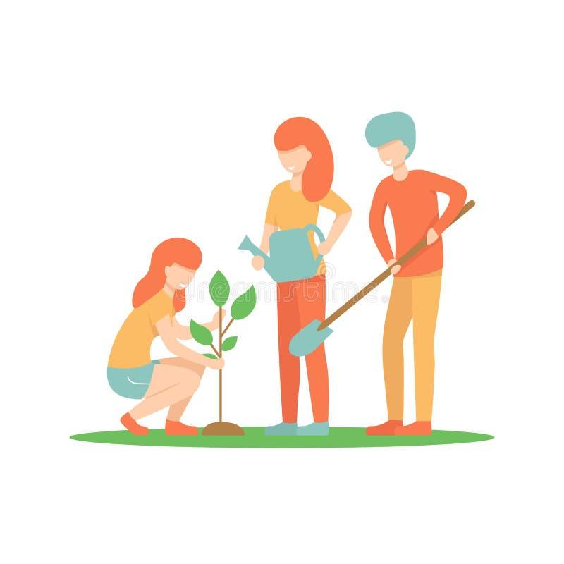 Para plantar uma árvore, três pessoas ilustração stock