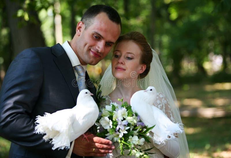 para poślubiająca niedawno zdjęcia royalty free