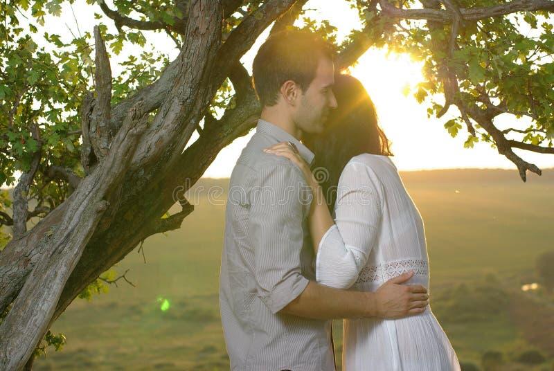 Para pod drzewem przy letnim dniem zdjęcie stock