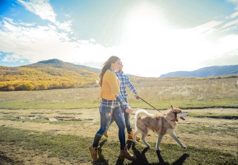 Para spaceru aporteru psa jesieni zmierzchu wsi mienia łąkowe ręki zdjęcia royalty free