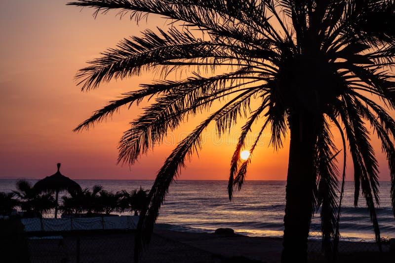 Para subir temprano salida del sol espléndida y gradual fotos de archivo libres de regalías