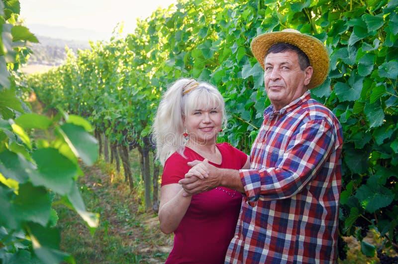 Para szczęśliwi ludzie na romantycznej dacie w winnicy fotografia royalty free