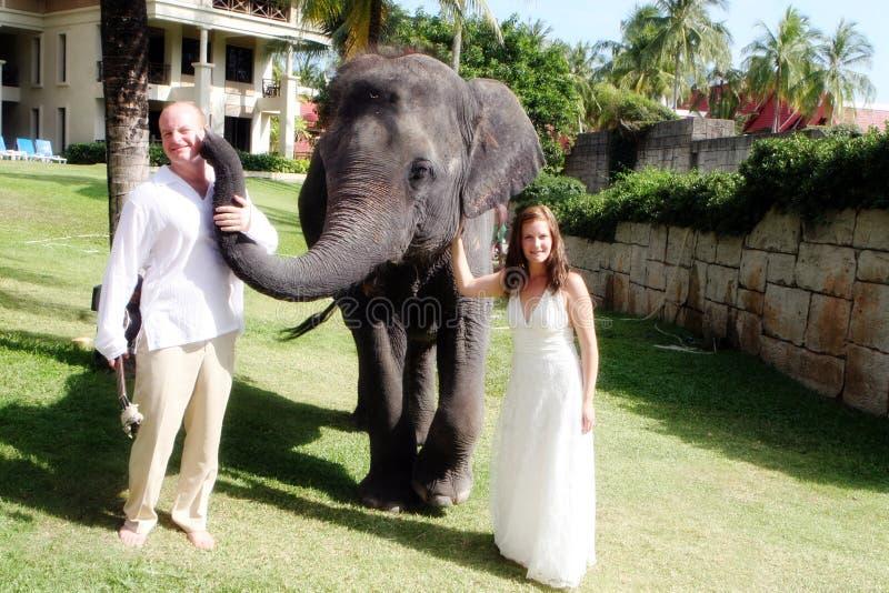 para właśnie poślubiająca zdjęcie royalty free