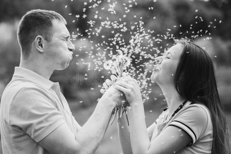Para w miłości dmucha radośnie blowballs kwiaty zdjęcie stock