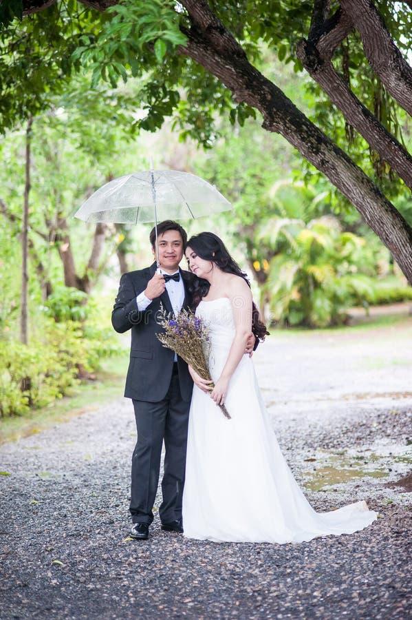Para w ogródzie zdjęcie royalty free