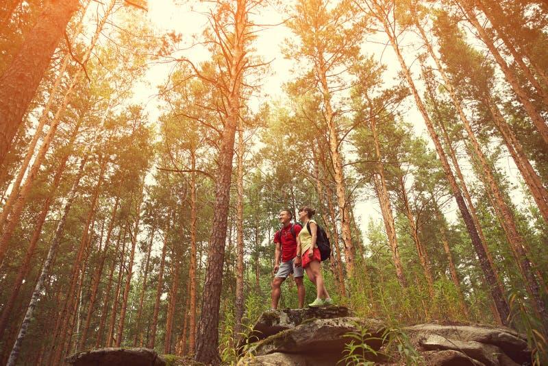 Para wycieczkowicze w lesie obraz royalty free