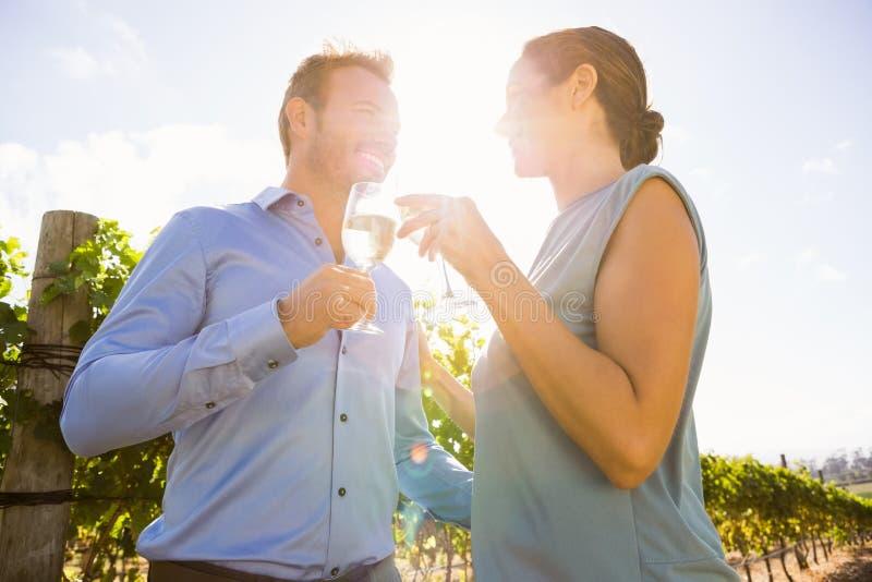 Para wznosi toast wineglasses na słonecznym dniu fotografia royalty free