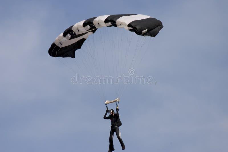 Paracaídas de la cebra imagen de archivo libre de regalías