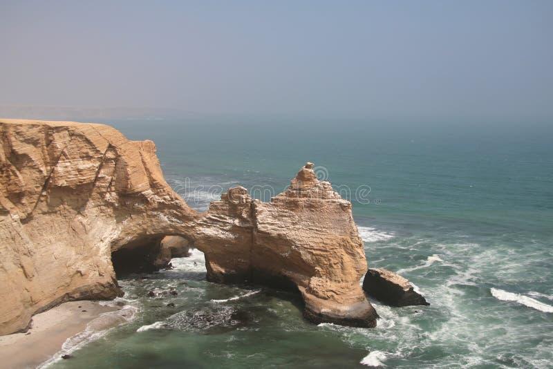 paracas公园秘鲁海运 库存照片