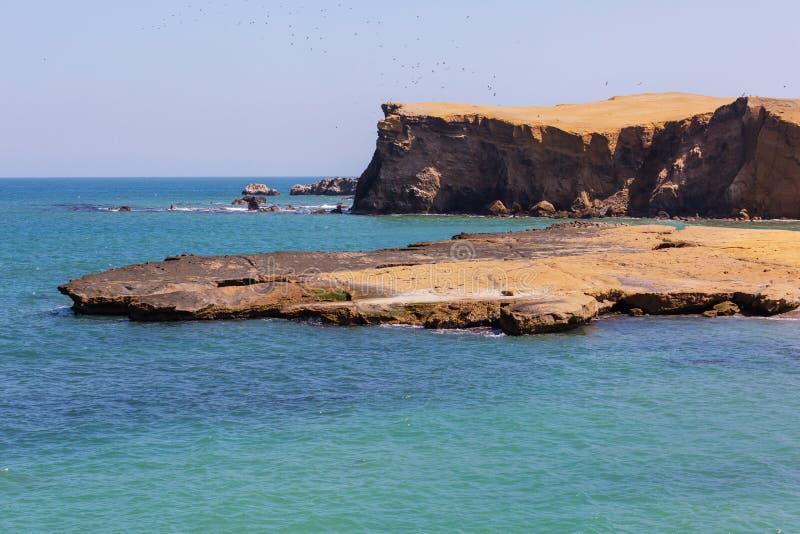 Paracas lizenzfreie stockfotografie