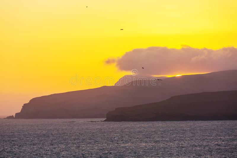 Paracas lizenzfreie stockbilder