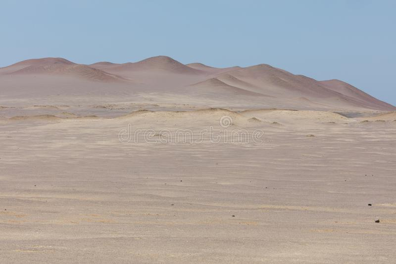 Paracas reserve, Peru. National reserve of Paracas,near Lima  Peru america animals ballestas bay beach beauty blue cruise cruiser day desert dream excursion royalty free stock image