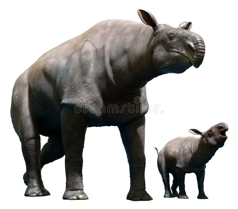 Paraceratherium con el becerro stock de ilustración