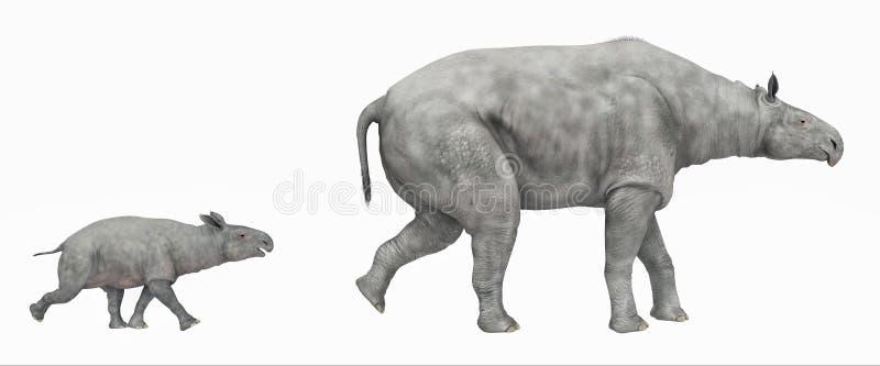 Paraceratherium isolou-se no fundo branco ilustração stock
