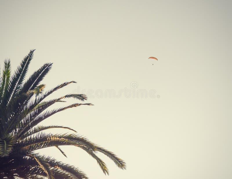 Parachuter auf einem Hintergrund stockfotografie