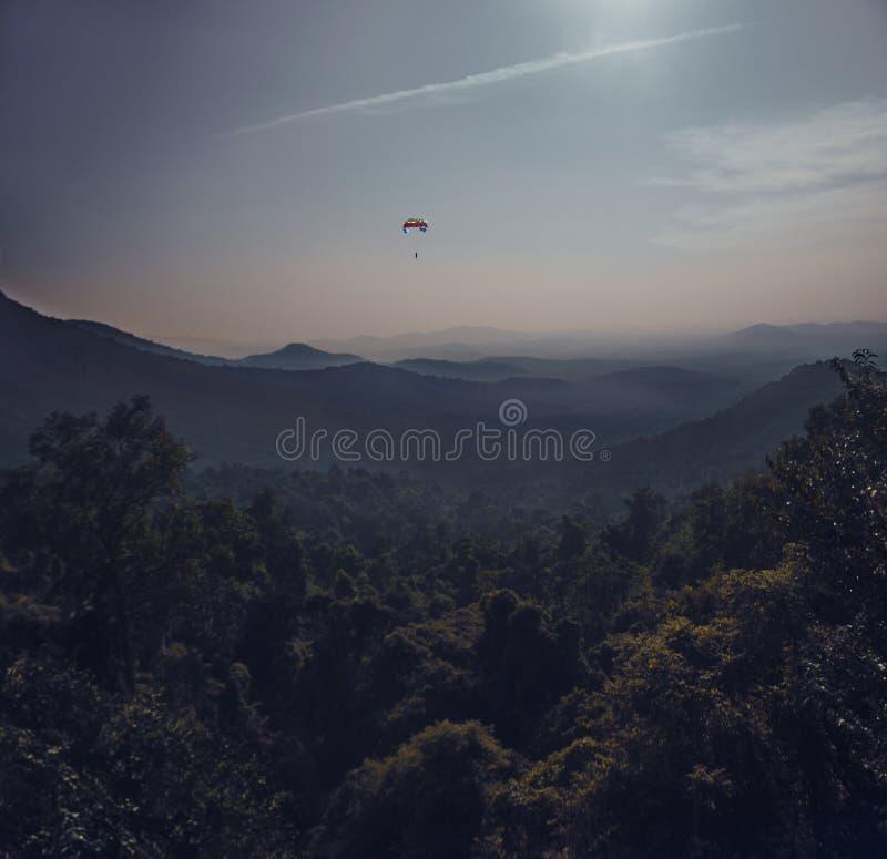 Parachuter-Fliegen über dem dichten Wald stockfoto