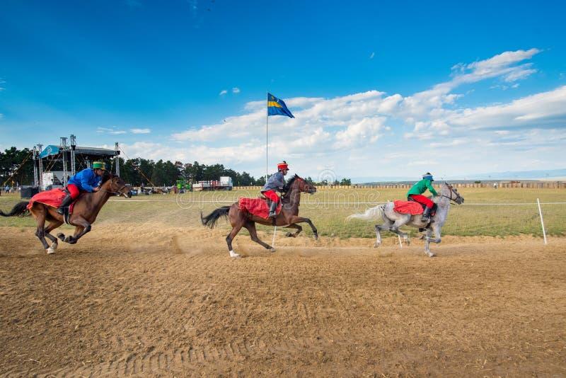 Parada do cavalo, durante uma mostra do cavalo com cavaleiros novos imagem de stock royalty free