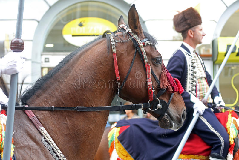 Parada 70 uczestników, dwadzieścia koni i czterdzieści członków orkiestra marsszowa, ogłaszaliśmy następni 300 Alka zdjęcie royalty free