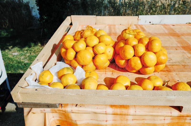 Paradas que venden los mandarines de las naranjas, CROACIA foto de archivo libre de regalías