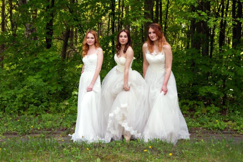 Parade van bruiden stock afbeelding