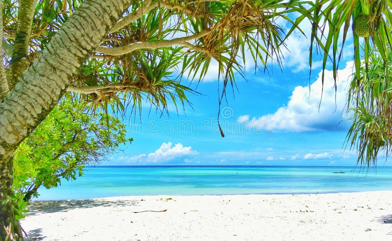Paradies-Insel-Feiertag stockbild