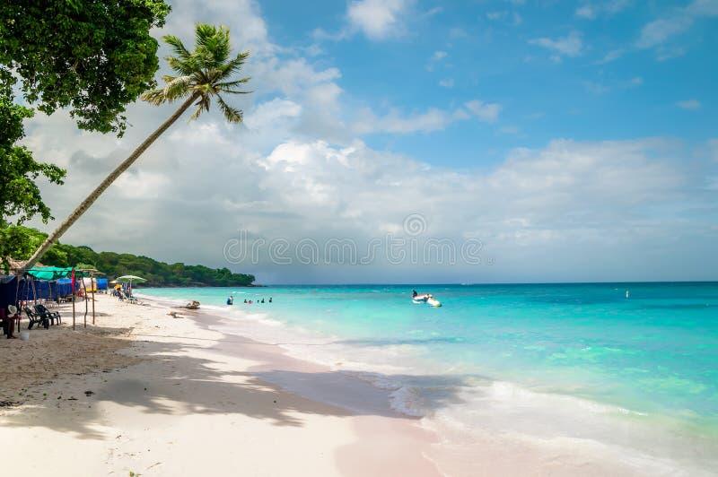 Paradies strand av Playa Blanca på ön Baru vid Cartagena i Colombia royaltyfri bild