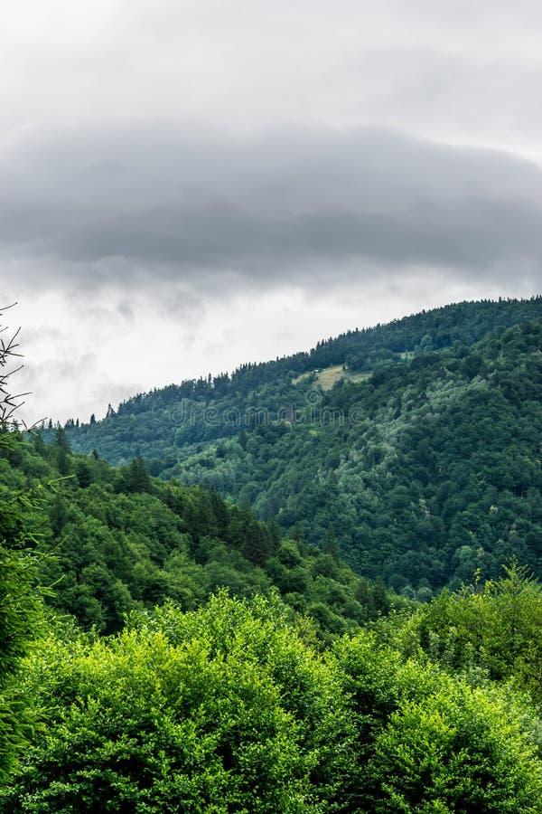 Paradieseinsiedlerei auf den Berg lizenzfreie stockfotografie