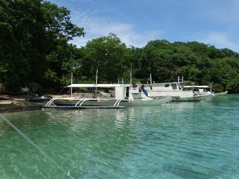 Paradiestropeninselstrand, Coron, Philippinen stockfotos