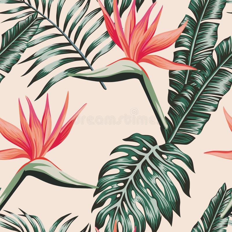 Paradiesvogel verlässt grüner Farbe tropisches nahtloses Muster lizenzfreie abbildung
