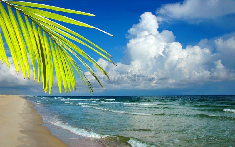Paradijs stock foto