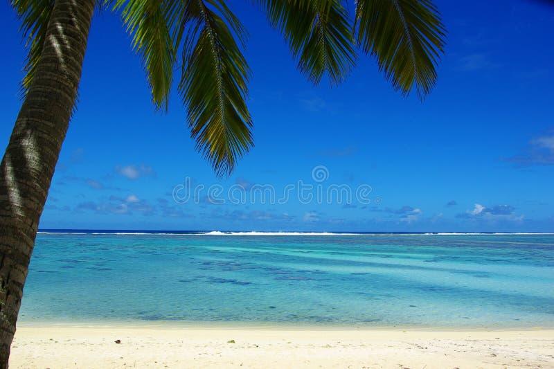 Paradijs tropisch eiland, een motu in een lagune stock afbeeldingen