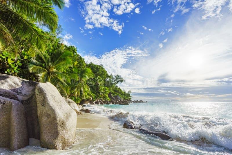 Paradijs tropisch strand met rotsen, palmen en turkoois wate stock foto's