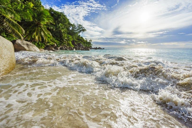 Paradijs tropisch strand met rotsen, palmen en turkoois wate royalty-vrije stock afbeeldingen