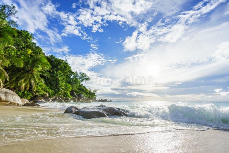 Paradijs tropisch strand met rotsen, palmen en turkoois wate stock foto