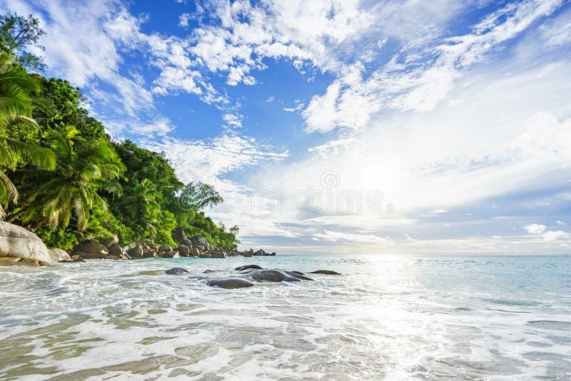 Paradijs tropisch strand met rotsen, palmen en turkoois wate stock afbeeldingen