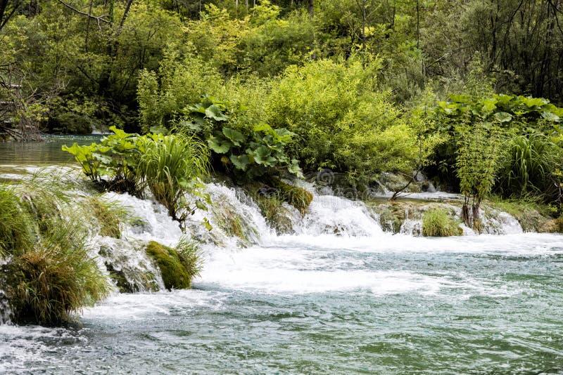 Paradijslandschap met waterval die in een vijver in Plitvice stromen stock foto's