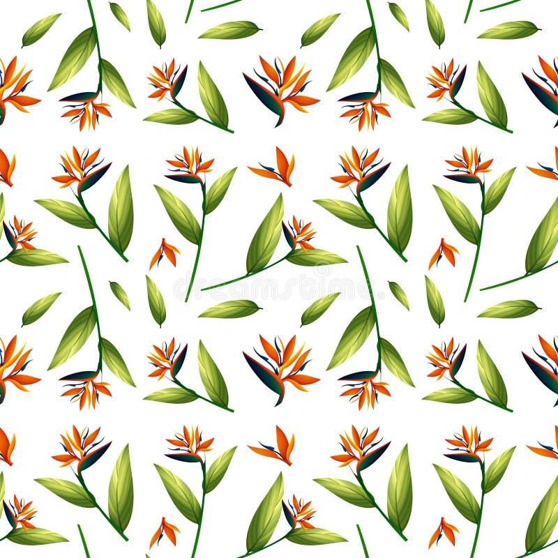 Paradijsvogel naadloos patroon royalty-vrije illustratie
