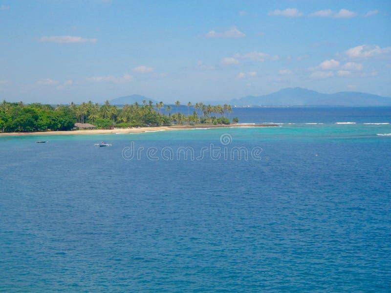 Paradisö med palmträd och den tropiska skogen royaltyfri bild