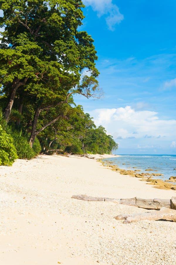 Paradis blanc intact d'origine de plage de sable image libre de droits