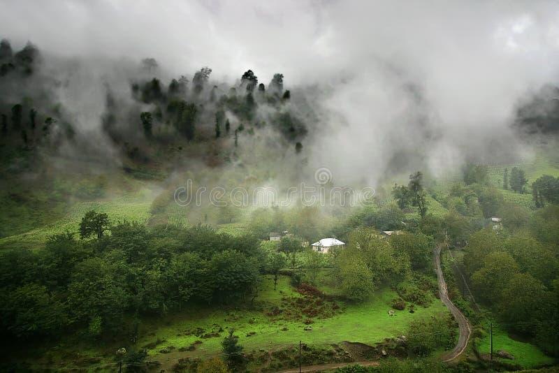 Paradis brumeux photo stock