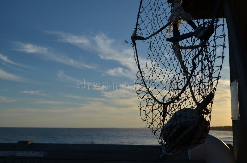 Download Paradis contagieux image stock. Image du fishnet, paradis - 45353307