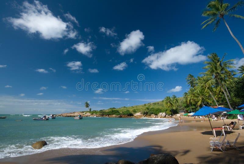 Paradis D île Photos libres de droits