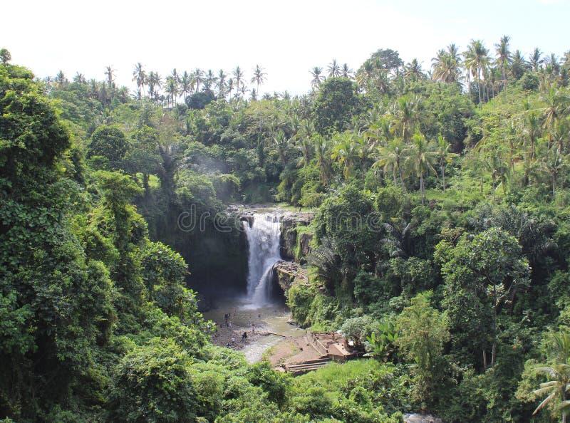 Paradis de cascade photos libres de droits