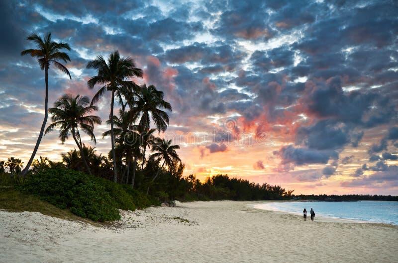 Paradis des Caraïbes tropical de plage de sable au coucher du soleil photo libre de droits