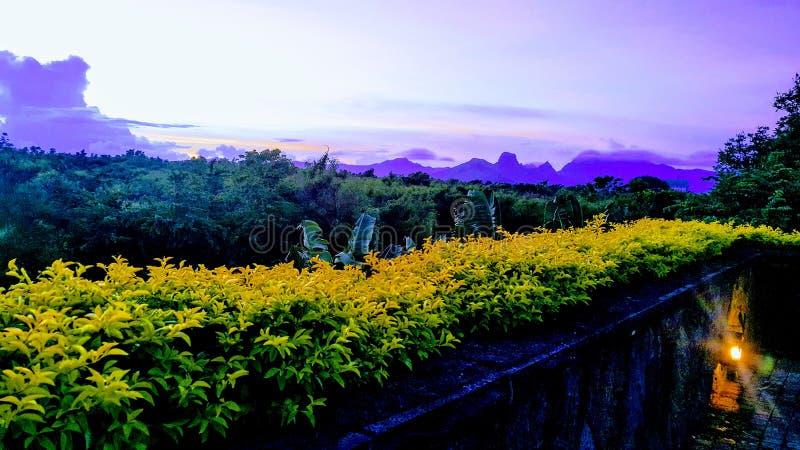 Paradis på jord royaltyfri bild