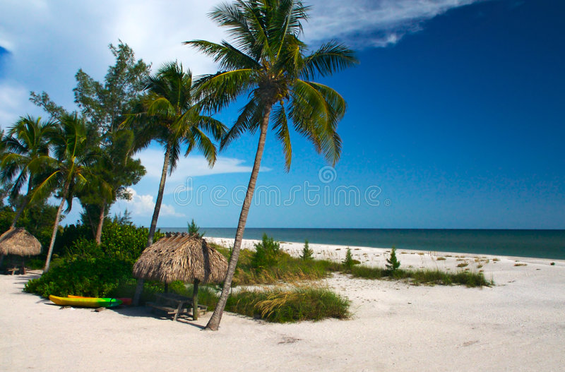 Paradis tropical photos stock