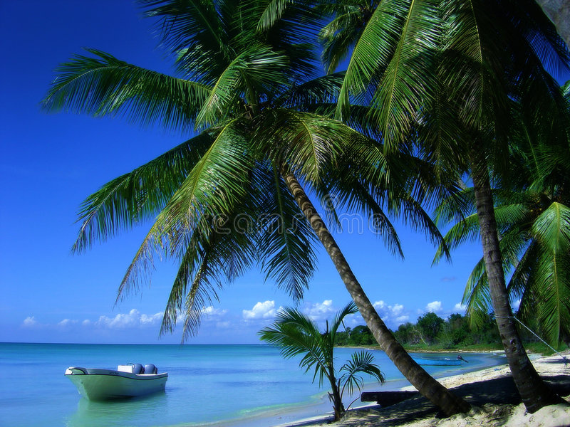 Paradis tropical image libre de droits