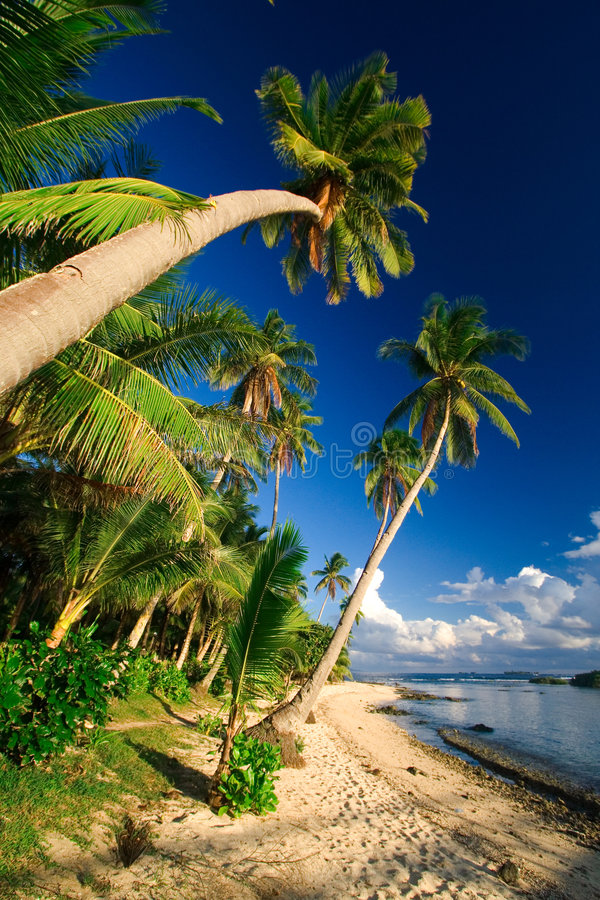 Paradis tropical de plage photo stock