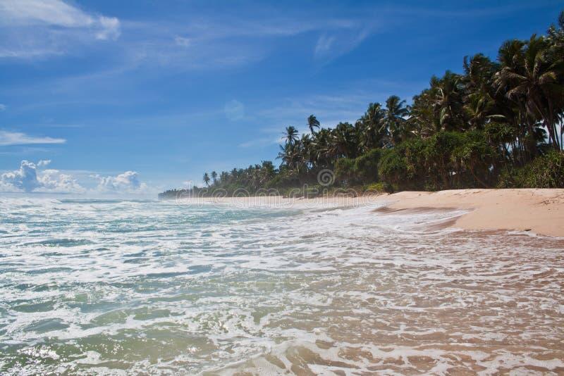 Paradis - tropisk strand, Sri Lanka arkivfoton